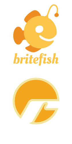 Britefish + Realnets, chicago digital marketing agency, chicago ppc agency, chicago seo agency, chicago marketing firm, park ridge il marketing agency